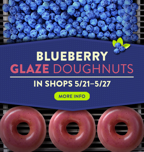 Blueberry Glaze Doughnuts
